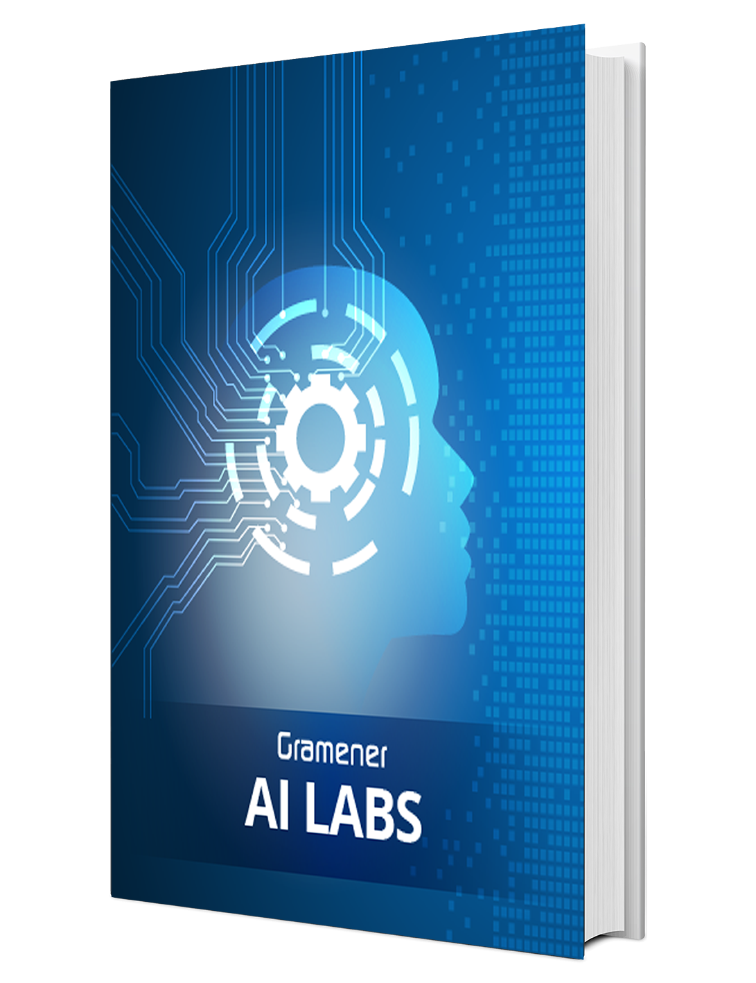 Gramener AI Labs | Brochure | Artificial Intelligence Services